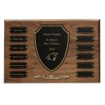 Cast Bronze Trim Perpetual Plaque Achievement Awards