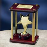 Brass Star Enclosed in Glass Box Jade Glass Awards